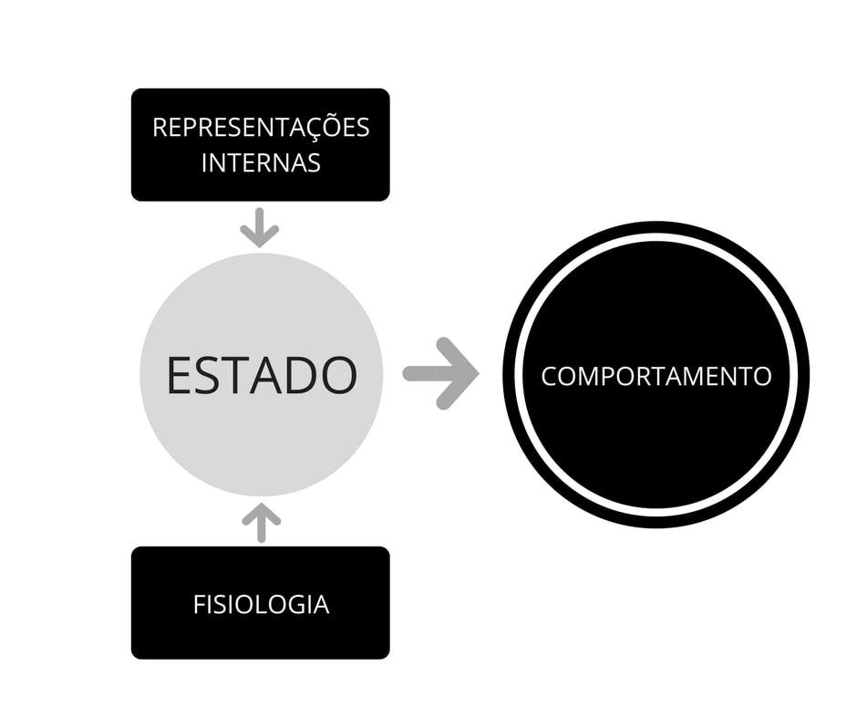 representações internas
