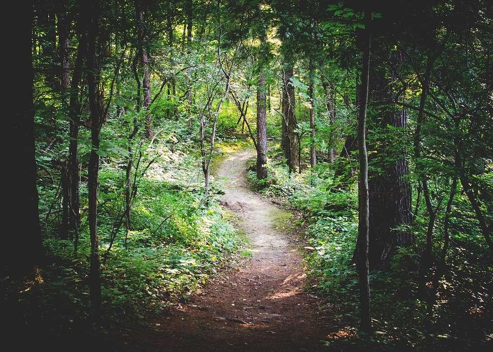 caminho atraves de repeticao
