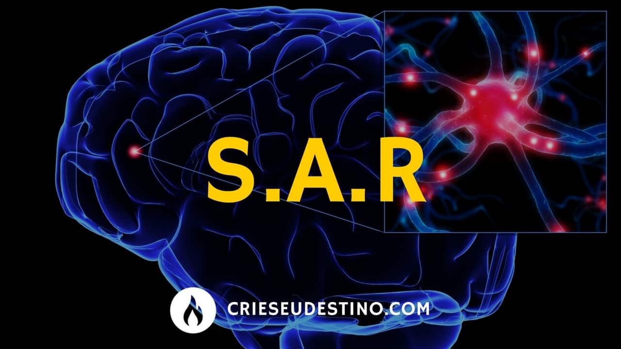 SAR - PNL